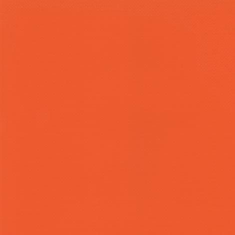 Carrot 2172