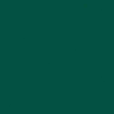 Tennis Green 8056C