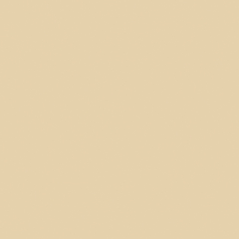 Vanilla 8861C